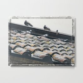 Birds on a Parisian Rooftop Metal Print