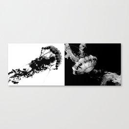Jellyfish Yin & Yang Canvas Print