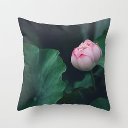 Flower Photography by Jerry Wang Throw Pillow