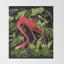 Flamingo Black Throw Blanket