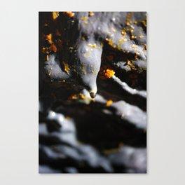 Lava tube cave Canvas Print
