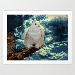 Snowy Owl against Aqua Sky Country Decor A147 Art Print