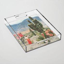 Decor Acrylic Tray