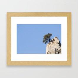 wild bonsai  Framed Art Print