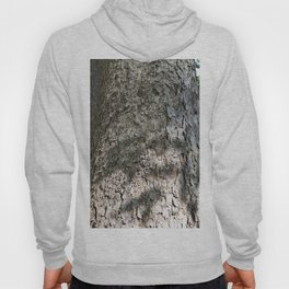 Sycamore Tree Bark Hoody