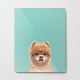 Pomeranian dog portrait minty cute art gifts for dog breed pom lovers Metal Print