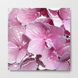 Impatient Pink Metal Print