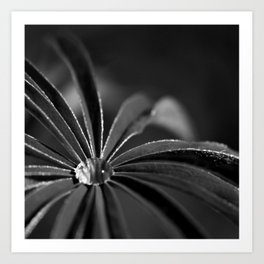 Water drop Art Print