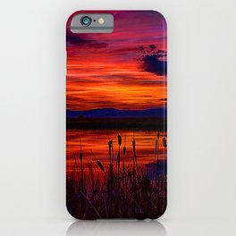 Ninepipe NWR iPhone Case
