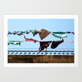 Hanging laundry in blowing wind Art Print