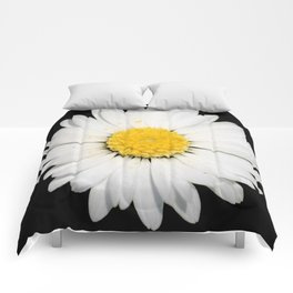 Nine Common Daisies Isolated on A Black Backgound Comforters