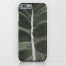 Money Plant Slim Case iPhone 6s