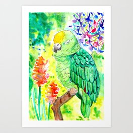 Sleepy Parrot || Watercolor and Ink Painting Art Print