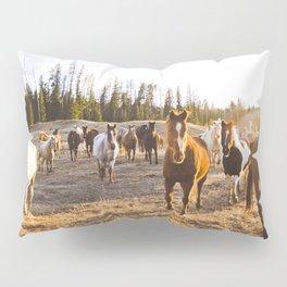 Horses at golden hour Pillow Sham