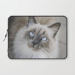 Blue eye cat Laptop Sleeve