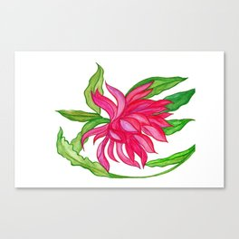 Waterolour Pink Lotus Flower Canvas Print
