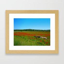 papaveri Framed Art Print