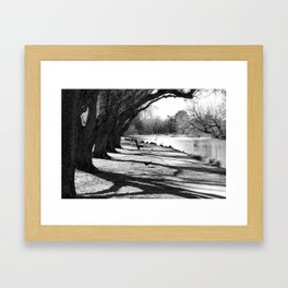 Lakeside bench in a park near the Grampians Framed Art Print