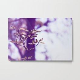 Flower Fine Art Photography in Stock 10 x 7 Vintage Retro Dreamy Metal Print