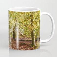Autumnal beech trees in a natural woodland. Norfolk, UK. Mug