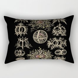 """""""Stephoidea"""" from """"Art Forms of Nature"""" by Ernst Haeckel Rectangular Pillow"""