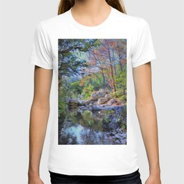 Lost Maples State Park T-shirt