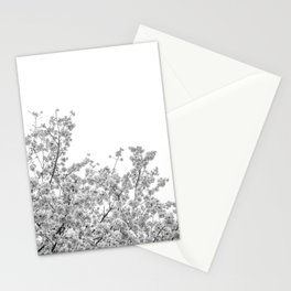 Cherry Blossoms (Black and White) Stationery Cards