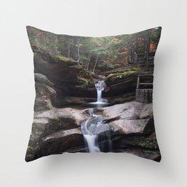 Sabbaday Falls in Autumn 2016 Throw Pillow