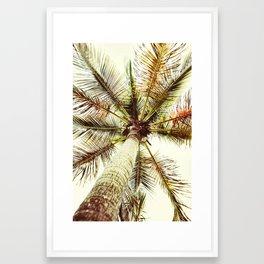 Perfect Palm Tree Framed Art Print