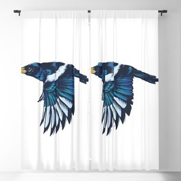 Yellow-billed Magpie Blackout Curtain