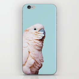 Parrot Photography | Pink Bird |  Tropical | Exotic | Turquoise Art | Blush Pink iPhone Skin