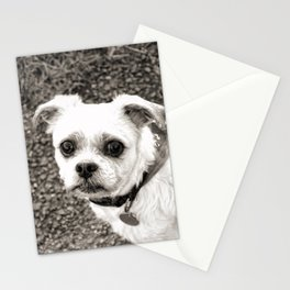 Molly black and white Stationery Cards