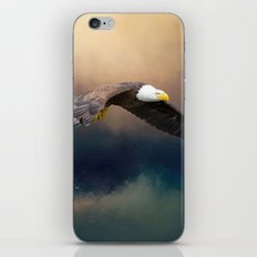 Painting flying american bald eagle iPhone & iPod Skin