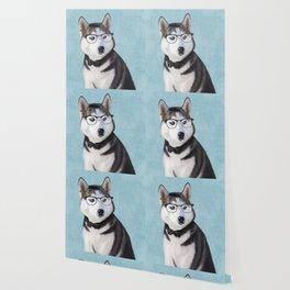 Mr Husky Wallpaper