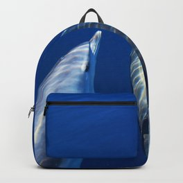 Playful and friendly dolphins Backpack