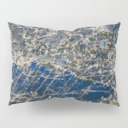 Botanical Gardens II - Holographic Mineral #360 Pillow Sham