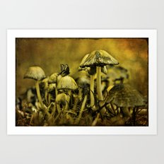 Fungus World Art Print