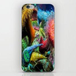 Aquarium Creatures iPhone Skin
