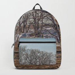 Winter Marsh Landscape Backpack
