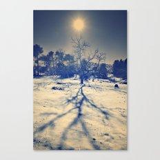 Winter sun. Vintage Canvas Print