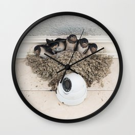 Swallow nestlings sitting in nest Wall Clock