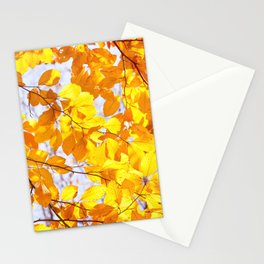 Autumn beech Fagus foliage yellow Stationery Cards