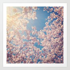 Blossom Series 1 Art Print
