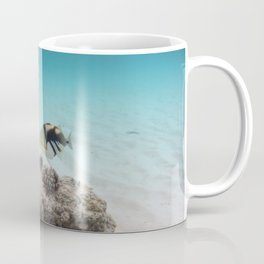 Tropical Maldives White Sand Lagoon Coral Fish Coffee Mug