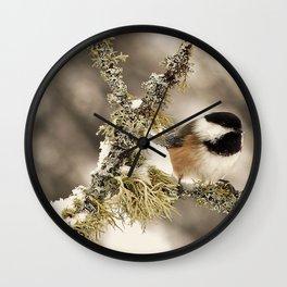 Chickadee and Old Man's Beard - Algonquin Park Wall Clock