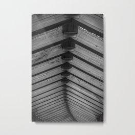 Spinal Metal Print