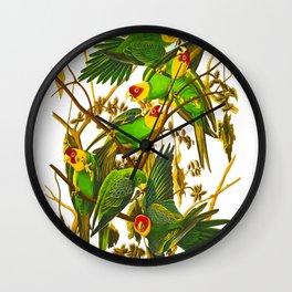 Carolina Parrot Wall Clock