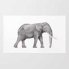 Bull Elephant  Rug