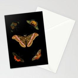Moths Butterflies In Darkness Vintage Scientific Illustration Encyclopedia Diagram Stationery Cards