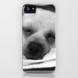 Peacefully Sleeping Dog iPhone Case